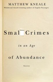 Small Crimes in an Age of Abundance