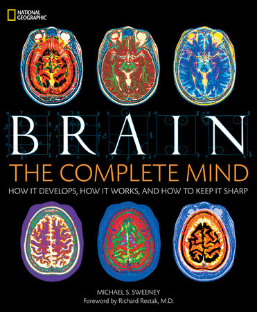 Brain by Michael S. Sweeney