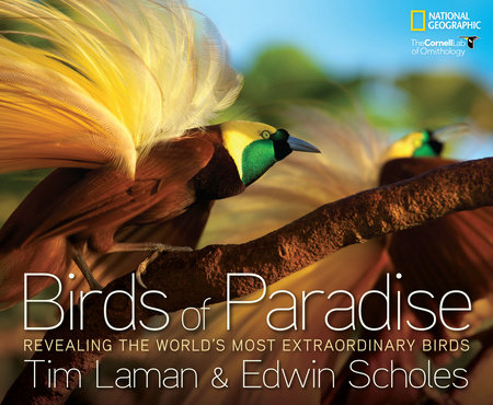 Birds of Paradise by Tim Laman and Edwin Scholes