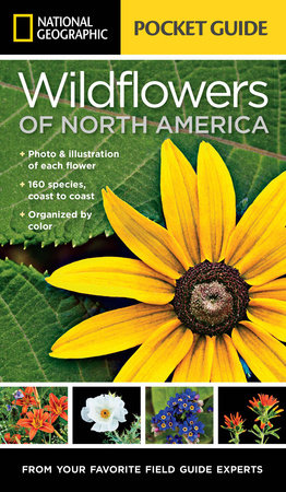 National Geographic Pocket Guide to Wildflowers of North America by Catherine Herbert Howell