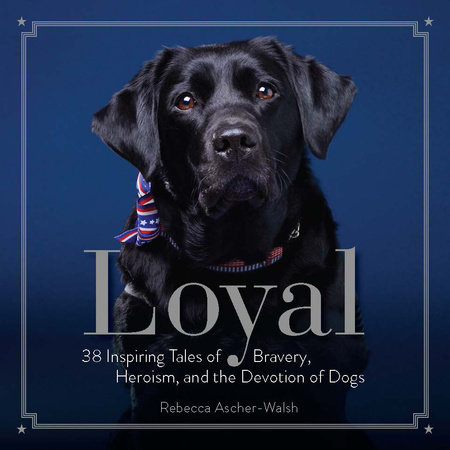 Loyal by Rebecca Ascher-Walsh
