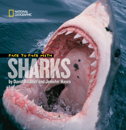 Face to Face With Sharks by David Doubilet and Jennifer Hayes