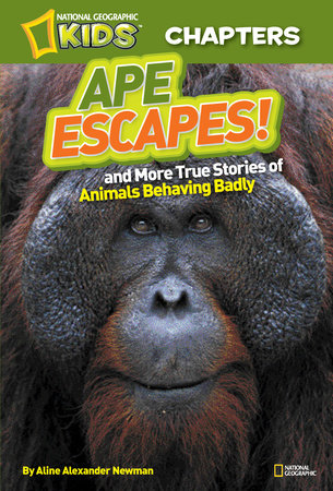 National Geographic Kids Chapters: Ape Escapes! by Aline Alexander Newman