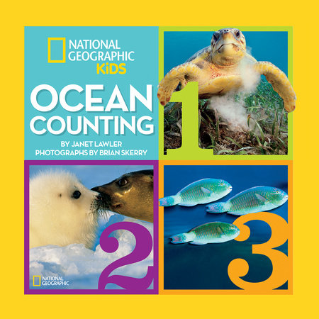 Ocean Counting by Janet Lawler