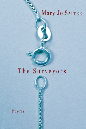 The cover of the book The Surveyors