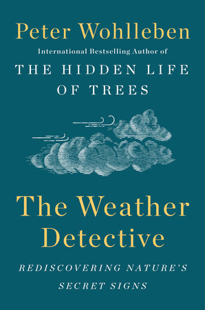 The cover of the book The Weather Detective