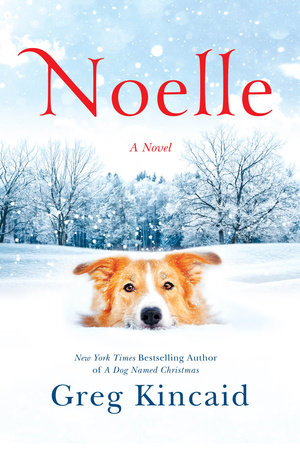 The cover of the book Noelle