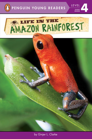 Life in the Amazon Rainforest by Ginjer L. Clarke