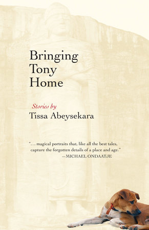 The cover of the book Bringing Tony Home