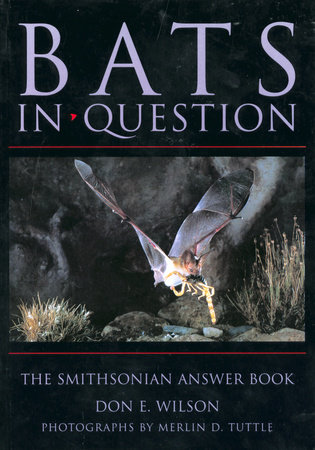 Bats in Question by Don E. Wilson