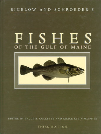 Bigelow and Schroeder's Fishes of the Gulf of Maine, Third Edition by Bruce B. Collette and Grace Klein-Macphee