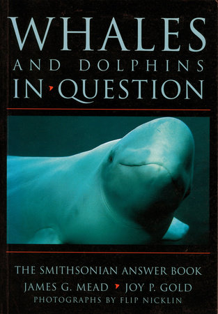 Whales and Dolphins in Question by James G. Mead and Joy P. Gold