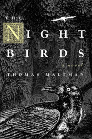 The Night Birds