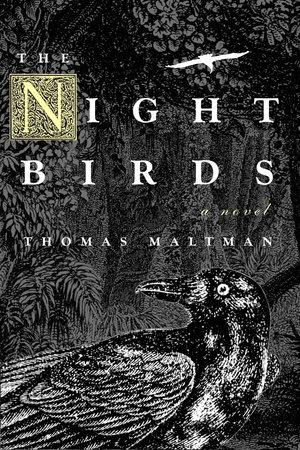 Night Birds by Thomas Maltman