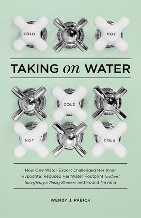 Taking on Water by Wendy J. Pabich