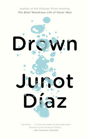 Drown Book Cover Picture