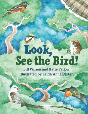 Look, See the Bird! by Bill Wilson and Katie Fallon