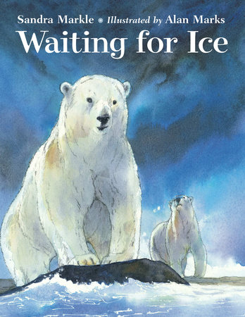 Waiting for Ice by Sandra Markle
