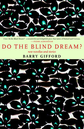 Do the Blind Dream? by Barry Gifford