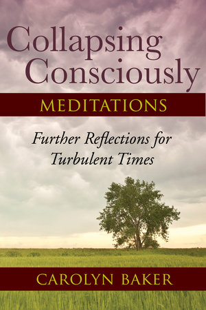 Collapsing Consciously Meditations by Carolyn Baker, Ph.D.