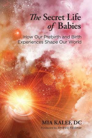The Secret Life of Babies by Mia Kalef, DC