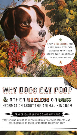 Why Dogs Eat Poop, and Other Useless or Gross Information About the Animal Kingd by Francesca Gould and David Haviland