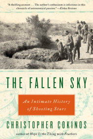 The Fallen Sky