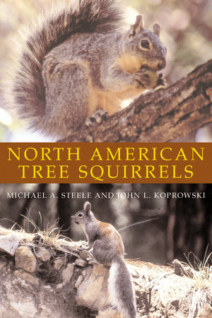 North American Tree Squirrels by Michael A. Steele and John L. Koprowski