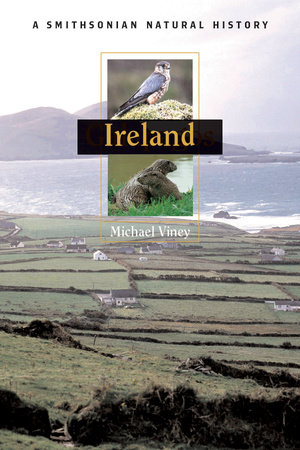 Ireland by Michael Viney
