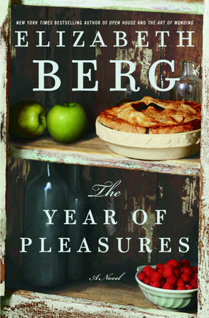 The Year of Pleasures by Elizabeth Berg