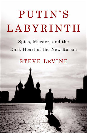 Putin's Labyrinth by Steve Levine