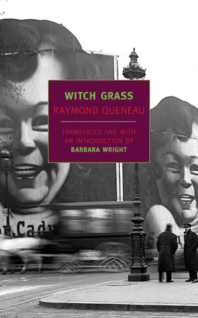 Witch Grass