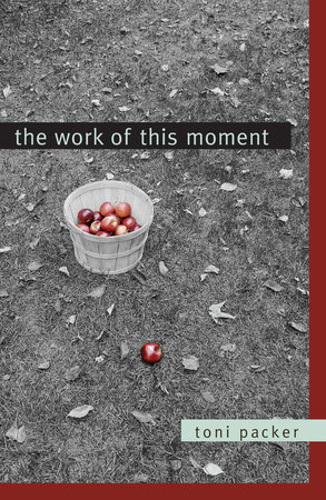 The Work of This Moment by Toni Packer