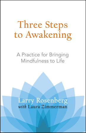 Three Steps to Awakening by Larry Rosenberg and Laura Zimmerman