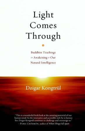 Light Comes Through by Dzigar Kongtrul