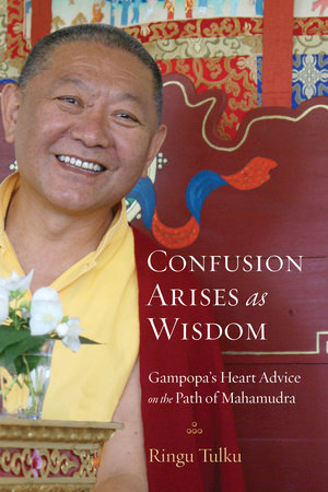 Confusion Arises as Wisdom by Ringu Tulku
