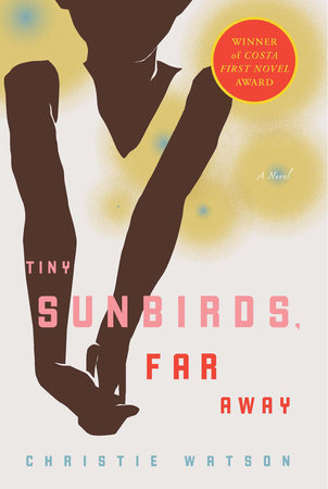 Tiny Sunbirds, Far Away by Christie Watson