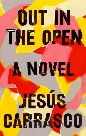 The cover of the book Out in the Open