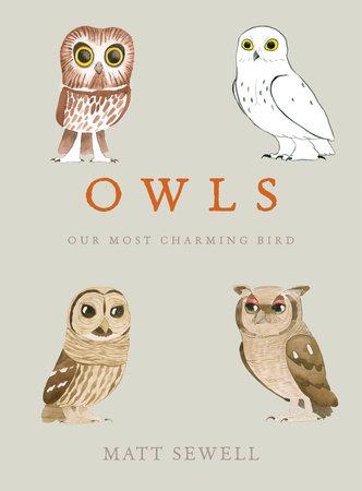 Owls by Matt Sewell