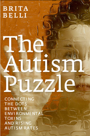 The Autism Puzzle by Brita Belli