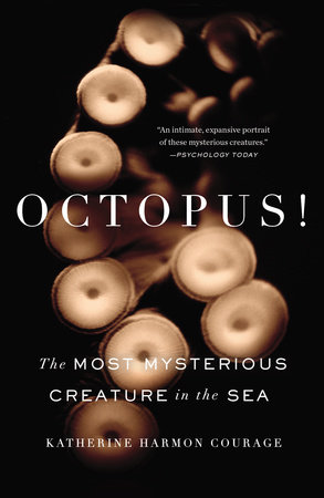 Octopus! Book Cover Picture