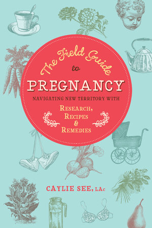 The Field Guide to Pregnancy