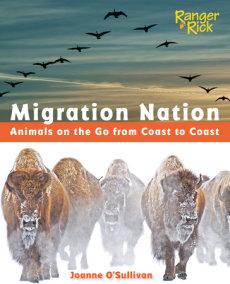 Migration Nation (National Wildlife Federation)