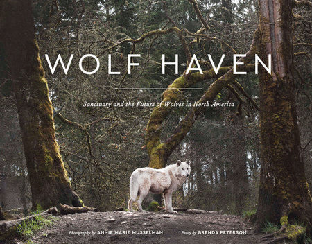Wolf Haven by Brenda Peterson