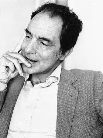 Photo of Italo Calvino