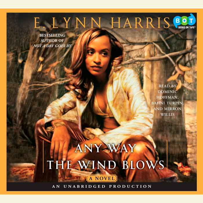 Any Way the Wind Blows Cover