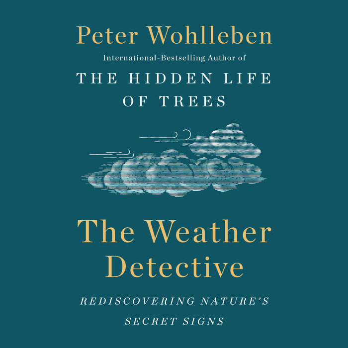 The Weather Detective Cover