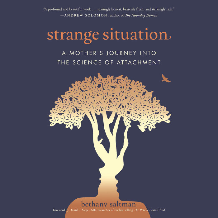Strange Situation Cover