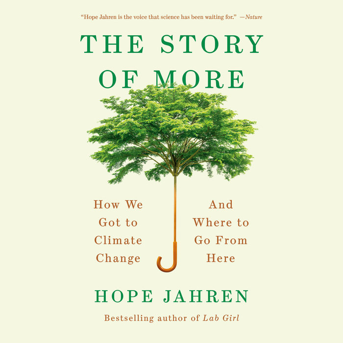The Story of More Cover