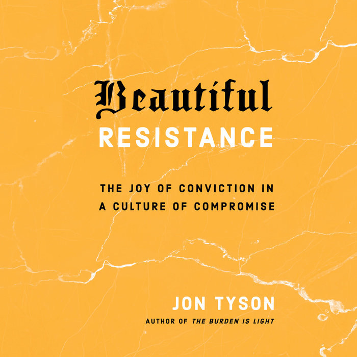 Beautiful Resistance Cover